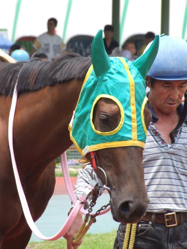 名古屋3歳牝馬3歳6 キムタツキャプテン